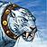Элитный беронский тигр
